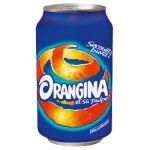 ORANGINA BOITES ORANGINA 33 CL (LOT DE 24)
