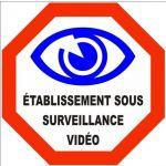 AUTOCOLLANT STICKER VIDEO SURVEILLANCE ETABLISSEMENT