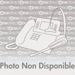 HOUSSE POUR COMBINÉ DEPAEPE PARTNER RX - ACCESSOIRE TÉLÉPHONE SANS FIL