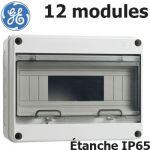 COFFRET ÉTANCHE DE DISTRIBUTION IP65 1X12 MODULES RAIL DIN PORTE TRANSPARENTE