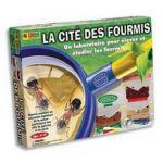 LA CITé DES FOURMIS - BSM