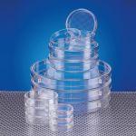 Boîte de Pétri ø x h = 35 x 10 mm traitée culture cellulaire Iwaki